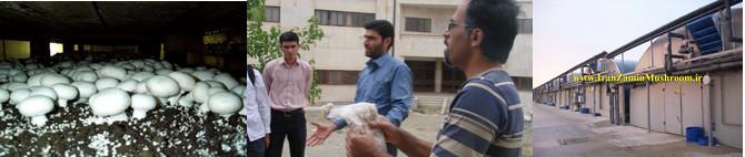 http://vmehdizadeh.persiangig.com/IRANZAMIN-PIC/8.jpg