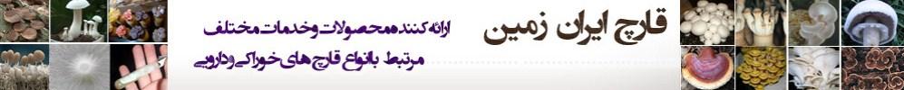http://vmehdizadeh.persiangig.com/IRANZAMIN-PIC/irnzamin.jpg