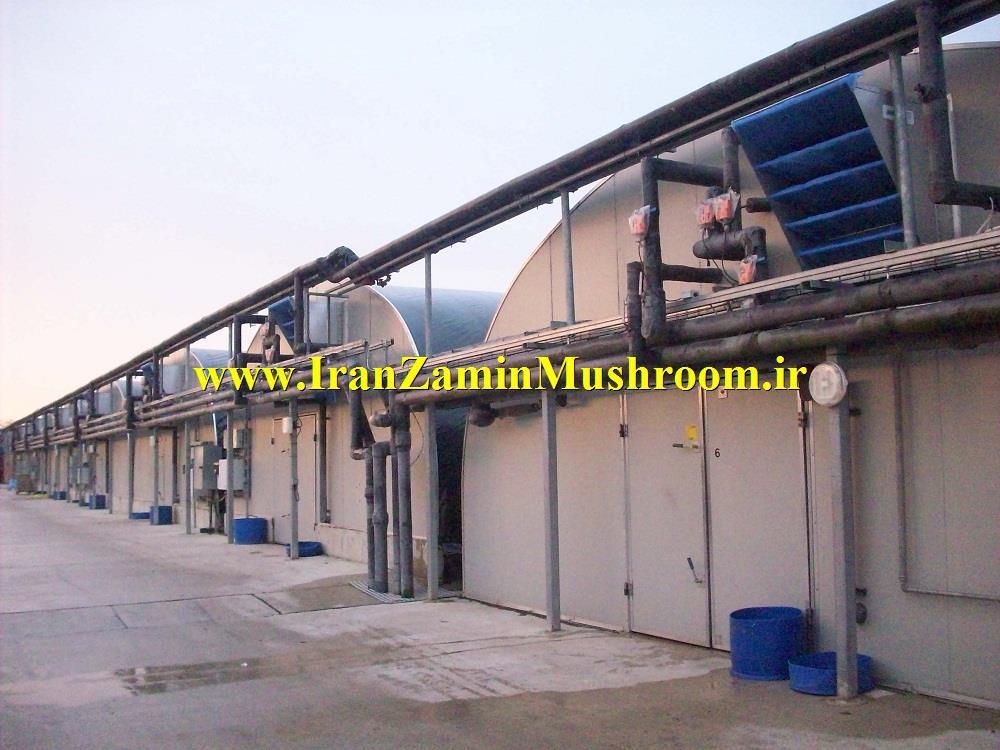 http://vmehdizadeh.persiangig.com/IRANZAMIN-PIC/www.IranZaminMushroom%20%2815%29.jpg