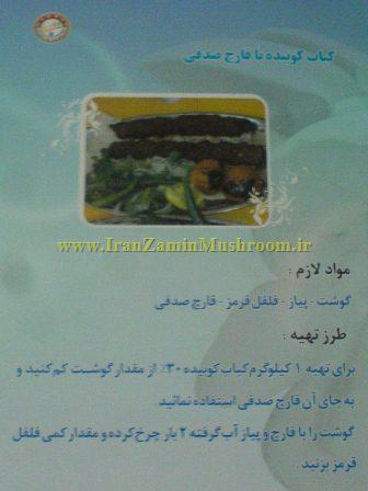 http://vmehdizadeh.persiangig.com/image/new_folder/WWW.IranZaminMushroom%20%283%29.JPG